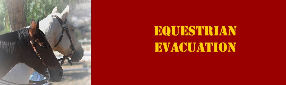 Find Ramona Trusted Horse Emergency Evacuation Guide